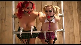 Busty schoolgirls strapped to milking machine